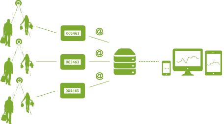 System internetowy